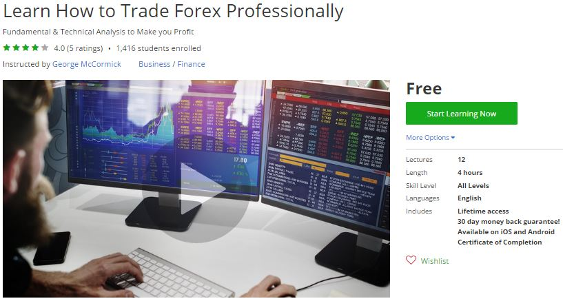 Trade forex professionally