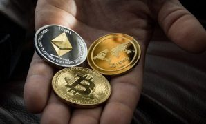 Udemy Coupon-Beginner's Guide to ICO (Initial Coin Offering)