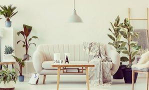 Udemy Coupon-AutoCAD , 3DS Max, Revit and Interior Design Test Series