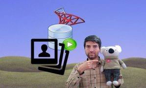 Udemy Coupon-Saving Image in SQL Database with C# from Scratch