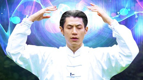 Udemy Coupon-Leading you into healing intuitive flow of sacred martial arts movements
