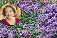 Udemy Coupon-Discover the Power of Essential Oils for Improved Energy and Health