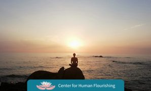 Udemy Coupon-Learn mindfulness and begin/enhance your practice, reduce stress and anxiety, improve attention and increase well-being