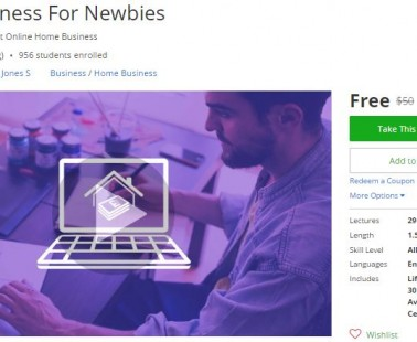 Udemy Coupon – Home Business For Newbies