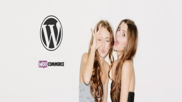 Udemy Coupon – How To Make an eCommerce Website With WordPress 2017