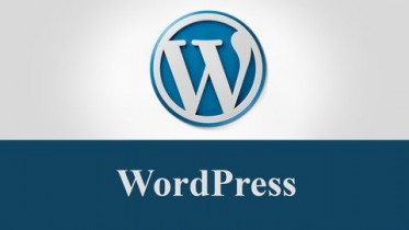Udemy Coupon – Learn Complete WordPress for Building a Professional Sites