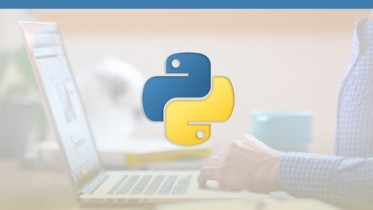Udemy Coupon – Learn Python in a Day