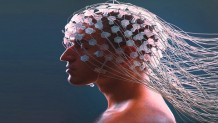 Udemy Coupon – The Neuroscience of Personal Branding