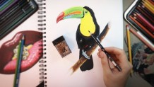 Udemy Coupon – The Ultimate Photorealistic Drawing Course