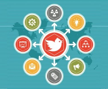 Udemy Coupon – Twitter Marketing: How I Got 18.000 Followers in One Month!