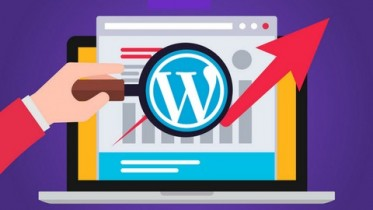 Udemy Coupon – WordPress SEO Tips and Content Creation Guide